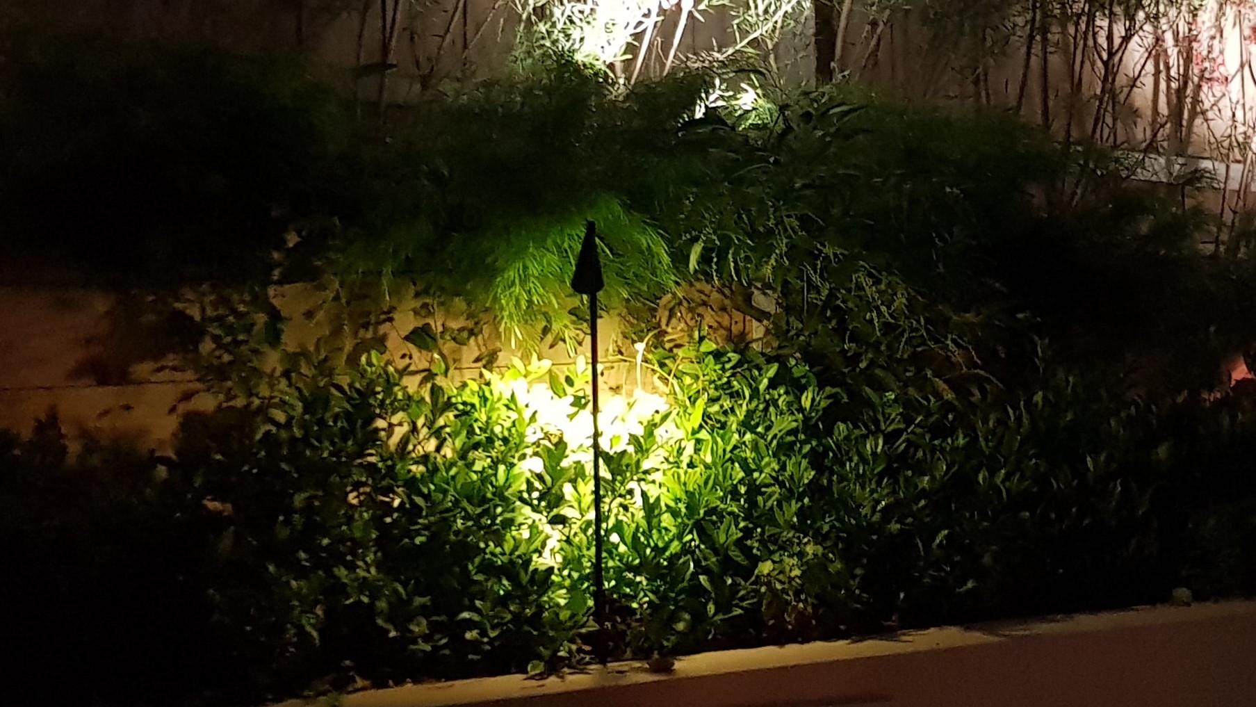 Garden Lighting | Kate Ashton Landscape Design - Melbourne